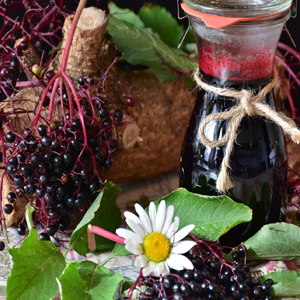 Buy Elderberry Extract for cold and flu