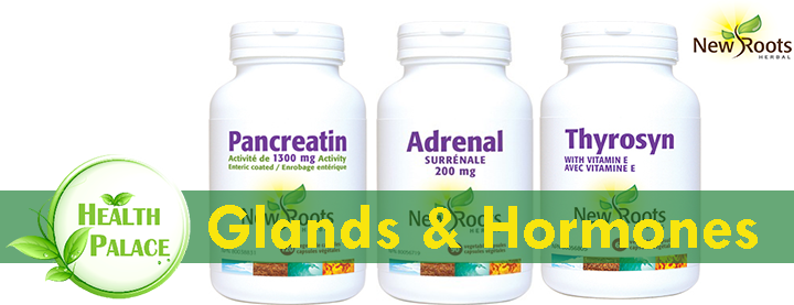 New Roots Glands and Hormones